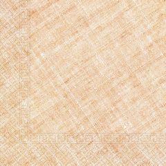 Papirservietter Compostable Orange Textile 20 stk,